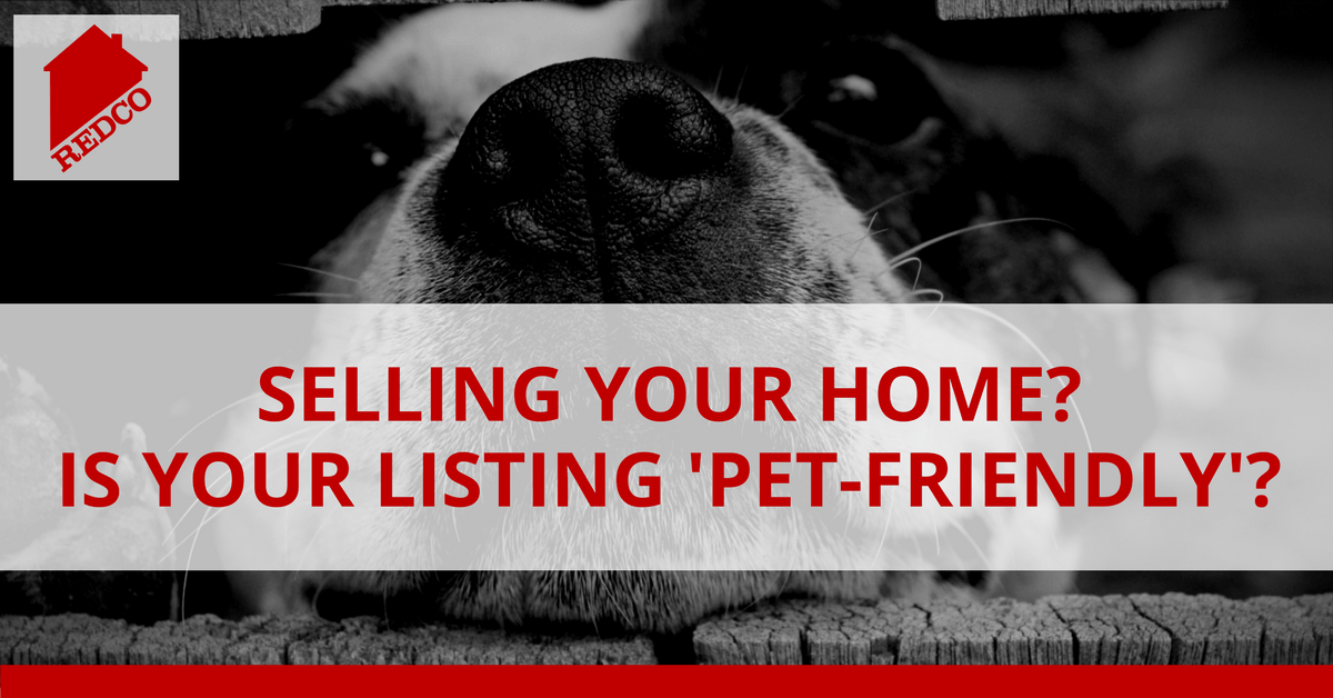 Is Your Listing Pet Friendly?